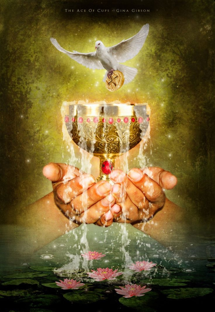 Card of the Day – Ace of Cups – Tuesday, January 9, 2018